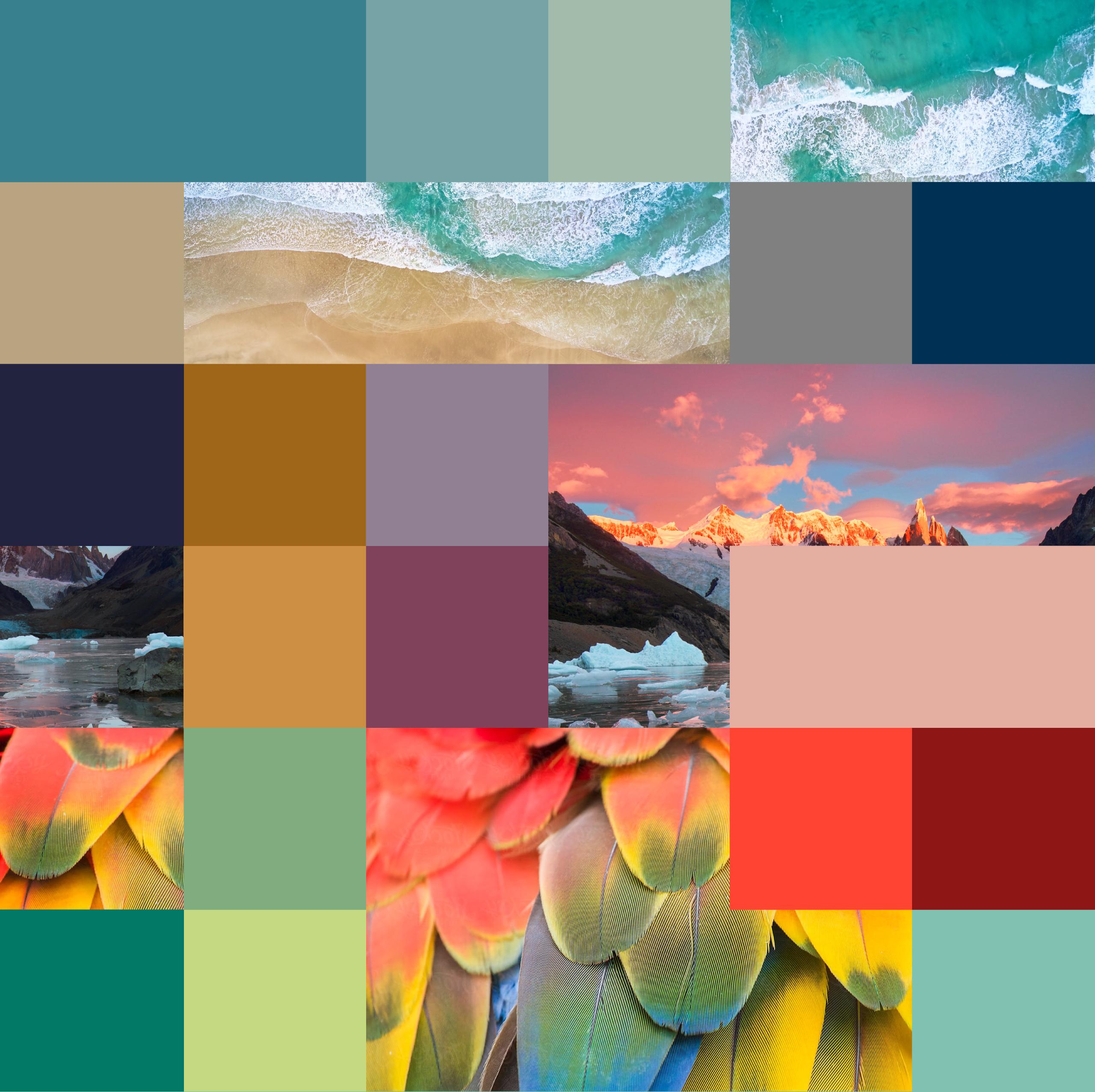 Ignacio-Arocena-colores